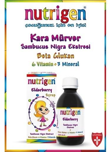 Nutrigen Nutrigen Kara Mürver Şurup 200 Ml + SaÇ Ve Vücut Şampuanı Hediyeli Renksiz